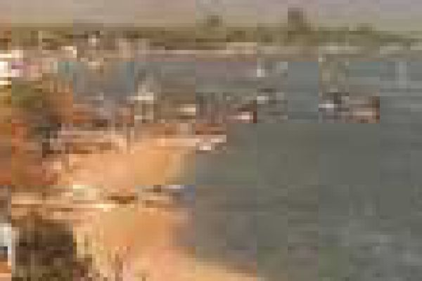 laria370F0252-33C8-0827-2646-6046581CA9DA.jpg